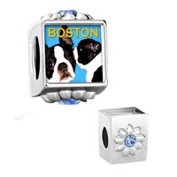 Charms Beads - flower aquamarine crystal pin boston terrier photo beads charms bracelets Image.