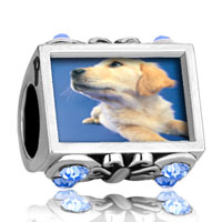 Charms Beads - photo against butterfly aquamarine crystal golden retriever puppy beads charms bracelets Image.