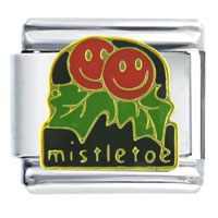 Italian Charms - happy face mistletoe birthstones jewelry italian charm Image.