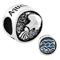 Charms Beads - silver silver tone aquarius horoscope zodiac lucky charms bracelets Image.