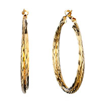 Earrings - pretty golden double hoop earrings Image.