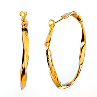 Earrings - golden hoop earrings Image.