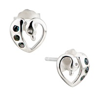 Earrings - snake with black crystal 925  sterling silver jewelry stud earrings Image.