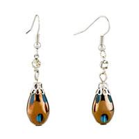 Earrings - classic drop blue resin silver plated hook earrings for women Image.