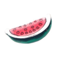 Floating Charms - watermelon floating charms for living memory lockets Image.