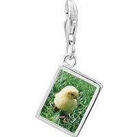 Link Charm Bracelet - 925  sterling silver baby chick photo rectangle frame link charm Image.