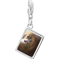 Link Charm Bracelet - 925  sterling silver goofy monkey photo rectangle frame link charm Image.