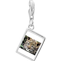 Link Charm Bracelet - 925  sterling silver baby leopard cub photo rectangle frame link charm Image.