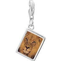 Link Charm Bracelet - 925  sterling silver king of the jungle lion photo rectangle frame link charm Image.