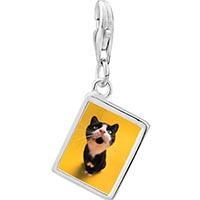 Link Charm Bracelet - 925  sterling silver cat yawning photo rectangle frame link charm Image.