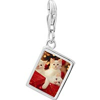 Link Charm Bracelet - 925  sterling silver christmas gift kittens photo rectangle frame link charm Image.
