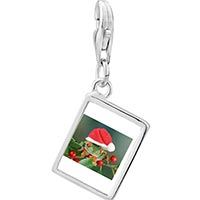 Link Charm Bracelet - 925  sterling silver holly hopping santa frog photo rectangle frame link charm Image.