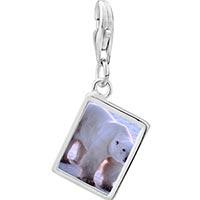 Link Charm Bracelet - 925  sterling silver white polar bear photo rectangle frame link charm Image.