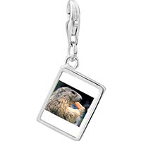 Link Charm Bracelet - 925  sterling silver squirrel eating carrot animal photo rectangle frame link charm Image.