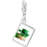 Link Charm Bracelet - 925  sterling silver st.  patricks day frog photo rectangle frame link charm Image.