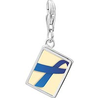 Link Charm Bracelet - 925  sterling silver blue ribbon awareness photo rectangle frame link charm Image.