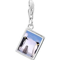 Link Charm Bracelet - 925  sterling silver gold plated animal penguin in antarctica photo rectangle frame link charm Image.