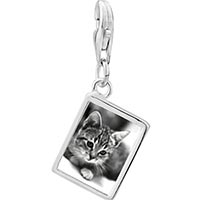 Link Charm Bracelet - 925  sterling silver cat in black &  white photo rectangle frame link charm Image.