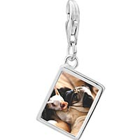 Link Charm Bracelet - 925  sterling silver puppy pals photo rectangle frame link charm Image.