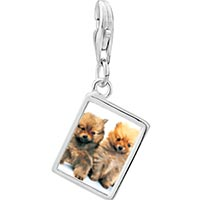 Link Charm Bracelet - 925  sterling silver chow chow twins photo rectangle frame link charm Image.