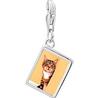 Link Charm Bracelet - 925  sterling silver peek a boo catphoto rectangle frame link charm Image.