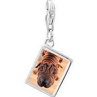 Link Charm Bracelet - 925  sterling silver wrinkly dog photo rectangle frame link charm Image.