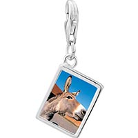 Link Charm Bracelet - 925  sterling silver brown donkey photo rectangle frame link charm Image.
