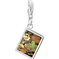 Link Charm Bracelet - 925  sterling silver squirrel and clover photo rectangle frame link charm Image.