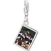 Link Charm Bracelet - 925  sterling silver two raccoons photo rectangle frame link charm Image.
