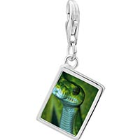 Link Charm Bracelet - 925  sterling silver green snake photo rectangle frame link charm Image.