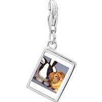Link Charm Bracelet - 925  sterling silver bunny and guinea pig photo rectangle frame link charm Image.