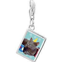 Link Charm Bracelet - 925  sterling silver birthday cat photo rectangle frame link charm Image.