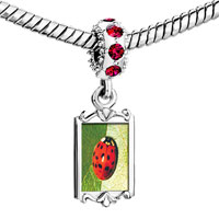 Charms Beads - red crystal dangle ladybug Image.
