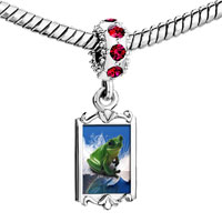 Charms Beads - red crystal dangle surfing frog Image.
