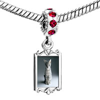 Charms Beads - red crystal dangle kitty portrait Image.