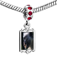 Charms Beads - red crystal dangle friendly monkey Image.