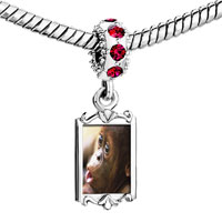 Charms Beads - red crystal dangle goy monkey Image.