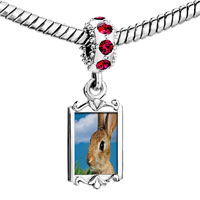 Charms Beads - red crystal dangle alert bunny rabbit Image.