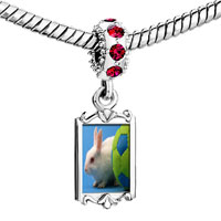 Charms Beads - red crystal dangle soccer bunny rabbit Image.