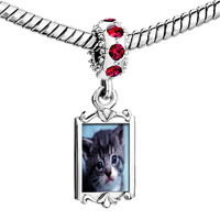 Charms Beads - red crystal dangle grey kitty Image.