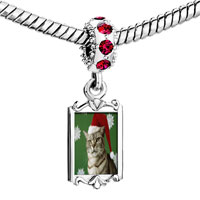 Charms Beads - red crystal dangle christmas cat looking good Image.