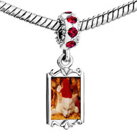 Charms Beads - red crystal dangle sleeping santa kitten Image.