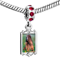 Charms Beads - red crystal dangle happy digging gopher Image.