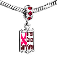 Charms Beads - red crystal dangle breast cancer survivor pink Image.