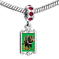 Charms Beads - red crystal dangle racoon Image.