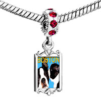 Charms Beads - red crystal dangle boston terrier Image.