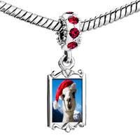 Charms Beads - red crystal dangle llama Image.
