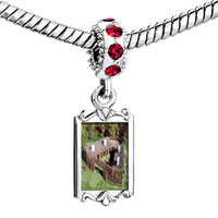 Charms Beads - red crystal dangle huts on the green Image.