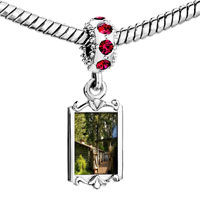 Charms Beads - red crystal dangle the door shade Image.