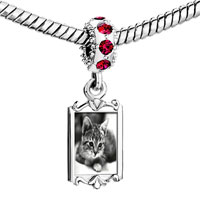 Charms Beads - red crystal dangle cat in black &  white Image.